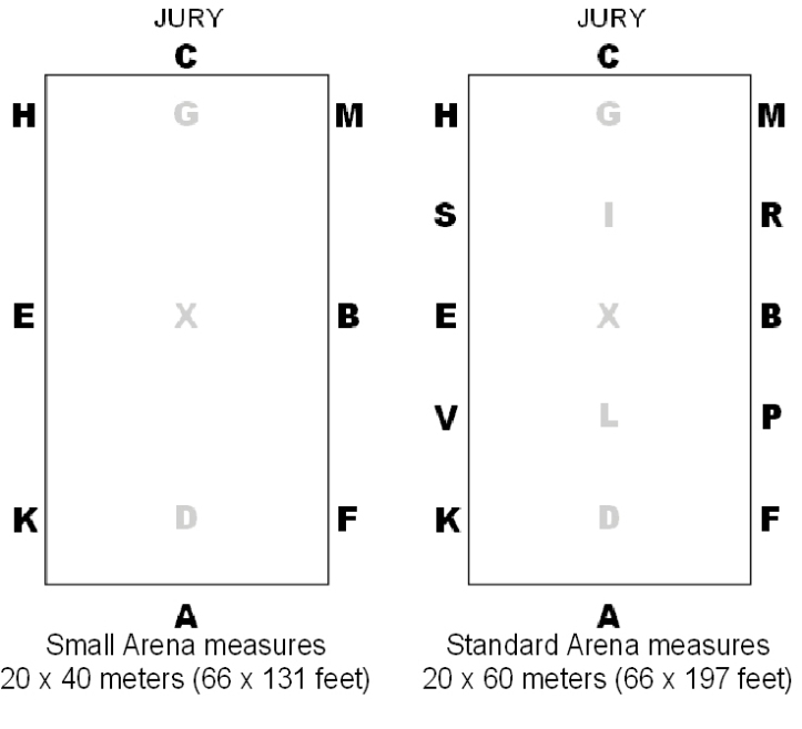 Small-and-Standard-Arena