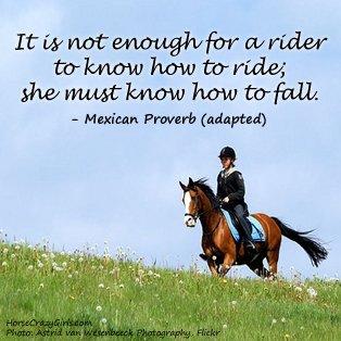 horse-quote-image-3-jpeg