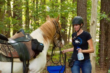 "Sometimes: He Is A ""Trail Obstacle Challenge Pony"""
