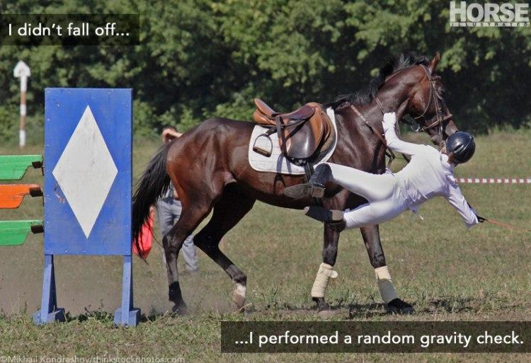 0318-random-gravity-check