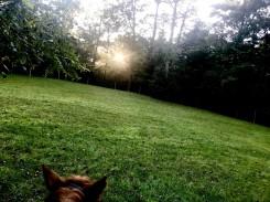 Sunset On Horseback Logging Hours For the 4-3-2-1 Challenge