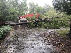 Hurricane Florence did some damage before she left Charlotte