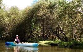 First Kayak Outing on Mountain Island Lake