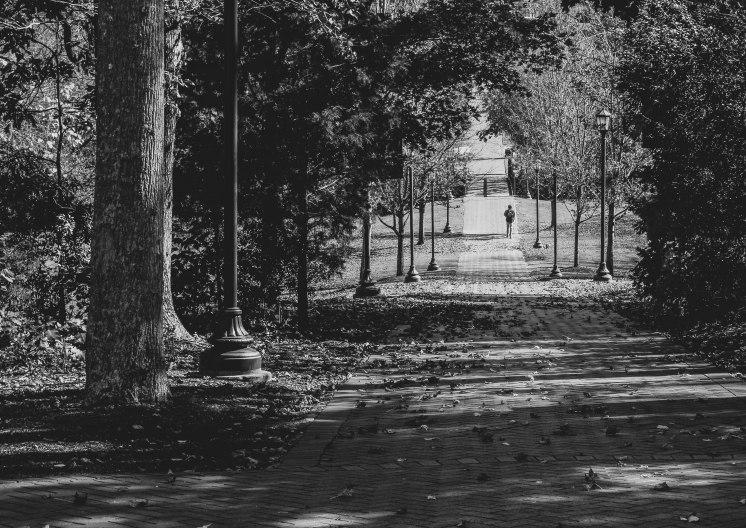 untitled-1950-2